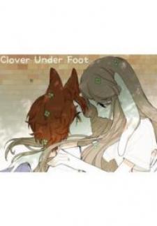 Clover Under Foot