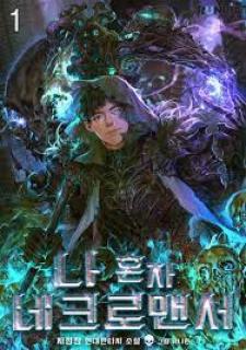 The Lone Necromancer