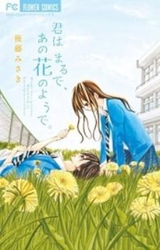 Kimi wa Maru de, Ano Hana no You de.